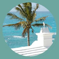 ocean_surf.web.icon