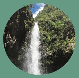 alelele_waterfall