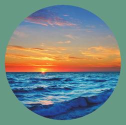 maui-surf-web-icon