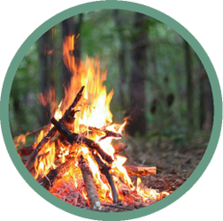 bonfire camp fire